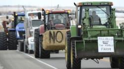 Alberta's Farm Safety Talks Lack.. Actual