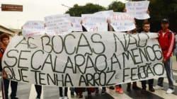 HORROR! Blitz pega escorpiões e pombas JUNTO de merendas em escolas de São