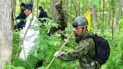Garçon disparu au Japon: des militaires se joignent aux