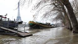La Seine attendue à son plus haut niveau