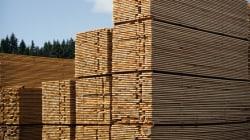 Vers une 5e guerre commerciale sur le bois