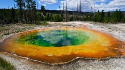 Un visitatore di Yellowstone è probabilmente morto dopo essere caduto in una sorgente