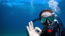 Oggi è il World Oceans Day, la salvaguardia dei mari