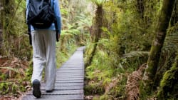 The Unlikely Health Benefits Of Walking In The