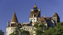 Les meilleurs vins des Carpates pour célébrer France -
