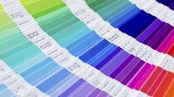 Voici la couleur la plus laide du monde