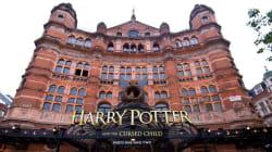 Les producteurs retirent les hiboux de la version théâtrale de «Harry