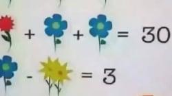 L'elementare problema di matematica che nessuno riesce a