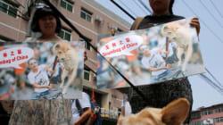 Festival de la viande de chien en Chine: quand les ONG aboient, l'appétit