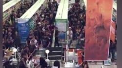 Des centaines de fans de metal dans un supermarché, ça donne