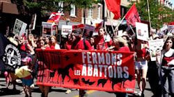La marche pour la fermeture des abattoirs: un mouvement antispéciste et