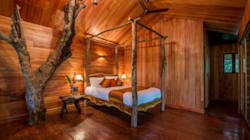 5 Awesome Tree Houses In India To Visit During The