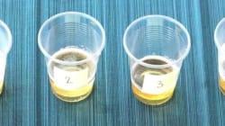 Seriez-vous capable de distinguer une bière sans alcool? Nous avons fait le