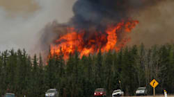 Warm Forecast Means More Forest Fires This Year, Meteorologist
