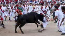 Maneka Gandhi Urges US President Obama To Skip Running Of The Bulls Event In