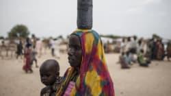 Sept morts dans une attaque de Boko Haram au