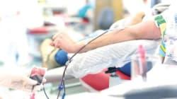 Les homosexuels peuvent donner du sang après un an