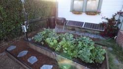 Ce robot cultive votre jardin