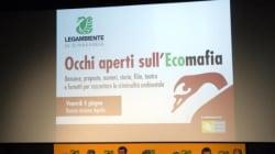 Ecomafie, un anno dopo: proseguire la sfida per lo sviluppo della green