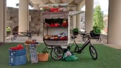 Fruixi: service mobile de vente de fruits et légumes