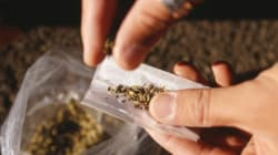 Legal Pot Could Cause 'Significant' Jump In Impaired Driving: