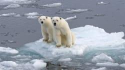 Classes de glace: ensemble avec nos enfants, préservons la