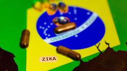 ブラジルオリンピックによってジカ熱が世界に広がる可能性は極めて低い