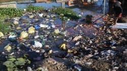 Eau contaminée à Rio: les athlètes devront «fermer leur