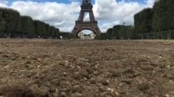 La fan zone a fait des dégâts sur le Champ-de-Mars à Paris et ça va coûter