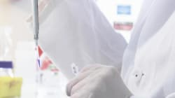 Con l'editing genetico cerchiamo di non replicare il tortuoso cammino della terapia