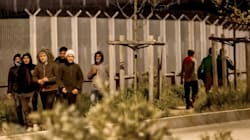 A Calais, le Royaume-Uni finance un mur végétal pour endiguer les