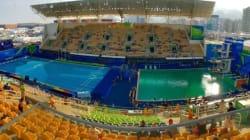 L'eau du bassin olympique de plongeon vire au vert... et on ne sait pas