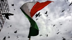 It Is Time India Declared Independence From Monsanto And Big
