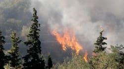 L'incendie dans les Pyrénées-Orientales