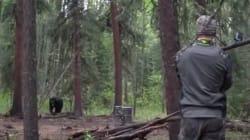 La vidéo d'un ours tué avec une lance sème la