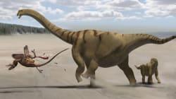 En un lugar de Cuenca aparece un dinosaurio