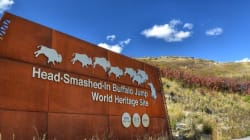 People Keep Shooting Head-Smashed-In Buffalo Jump's Welcome