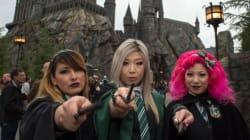 Les fans de Harry Potter seraient moins susceptibles de voter pour