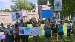 Rassemblement en appui aux pitbulls à Québec