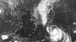 台風10号、異例のUターンの理由 観測史上初の事態か