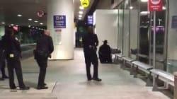 Un Zorro crée la panique à l'aéroport de Los Angeles