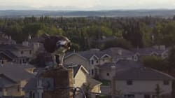 Calgarian Captures Drone's-Eye View Of Osprey Eating