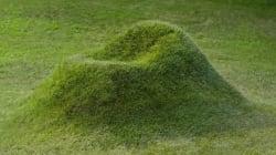 Cette chaise à planter va transformer votre