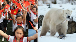 Will Canada Give China A Seat At The Arctic