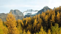 4 Reasons Why Everyone Should Visit The Canadian Rockies This
