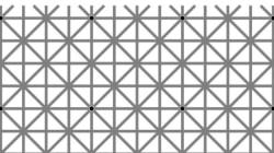 あなたには、この12個の点が見えますか?