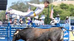 «Bull Jumping», un sport extrême dans la lentille d'une montréalaise