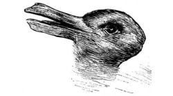 ¿Pato o conejo? Tu respuesta dice mucho sobre tu forma de