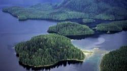 Appui royal pour une forêt canadienne