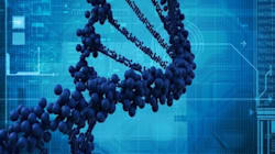 Des chercheurs ont créé une bactérie dont l'ADN n'existe pas sur